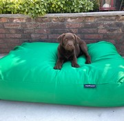 Dog's Companion Dog bed spring green (coating) Small