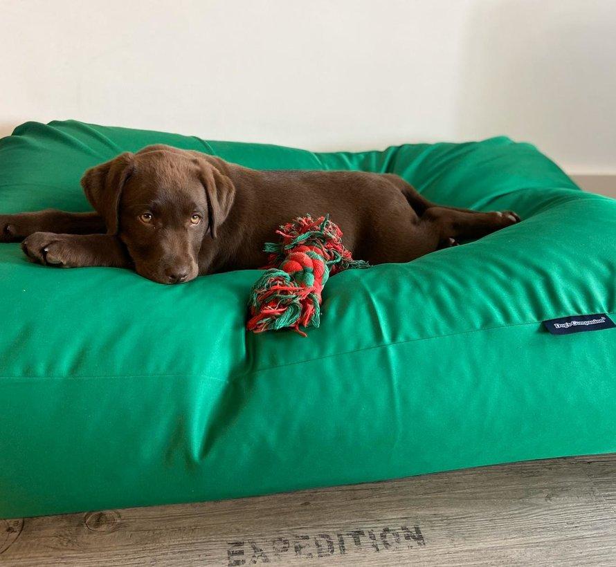 Dog bed spring green (coating) Large