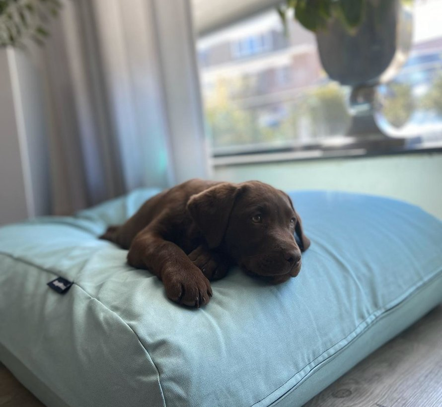 Dog bed Ocean Large