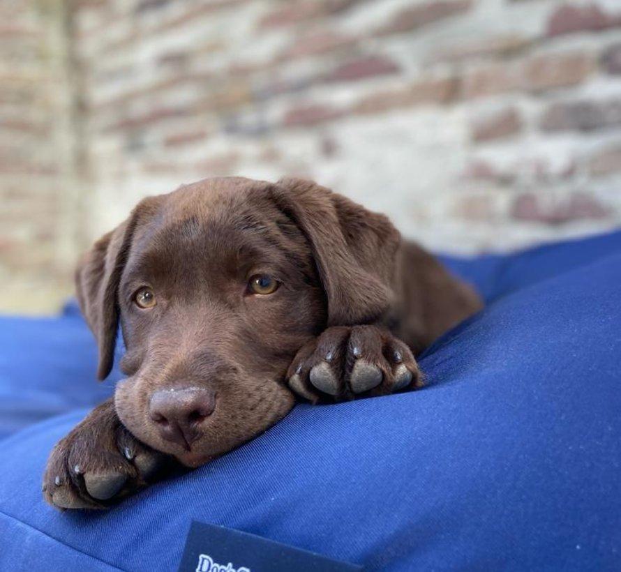 Lit pour chien Bleu Marine (coating)