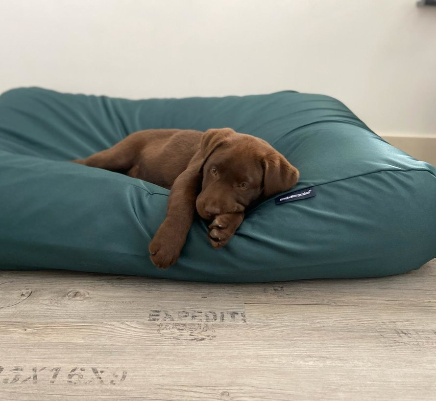 Dog bed Green (coating) Large