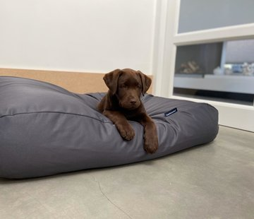 Dog's Companion Hundebett Charcoal (beschichtet) Medium