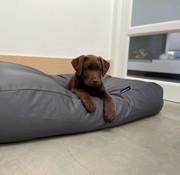 Dog's Companion Hundebett Charcoal (beschichtet) Superlarge