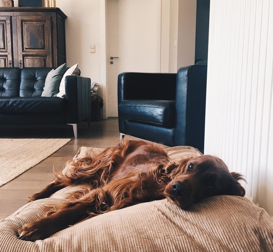 Lit pour chien Chameau (corduroy) Medium