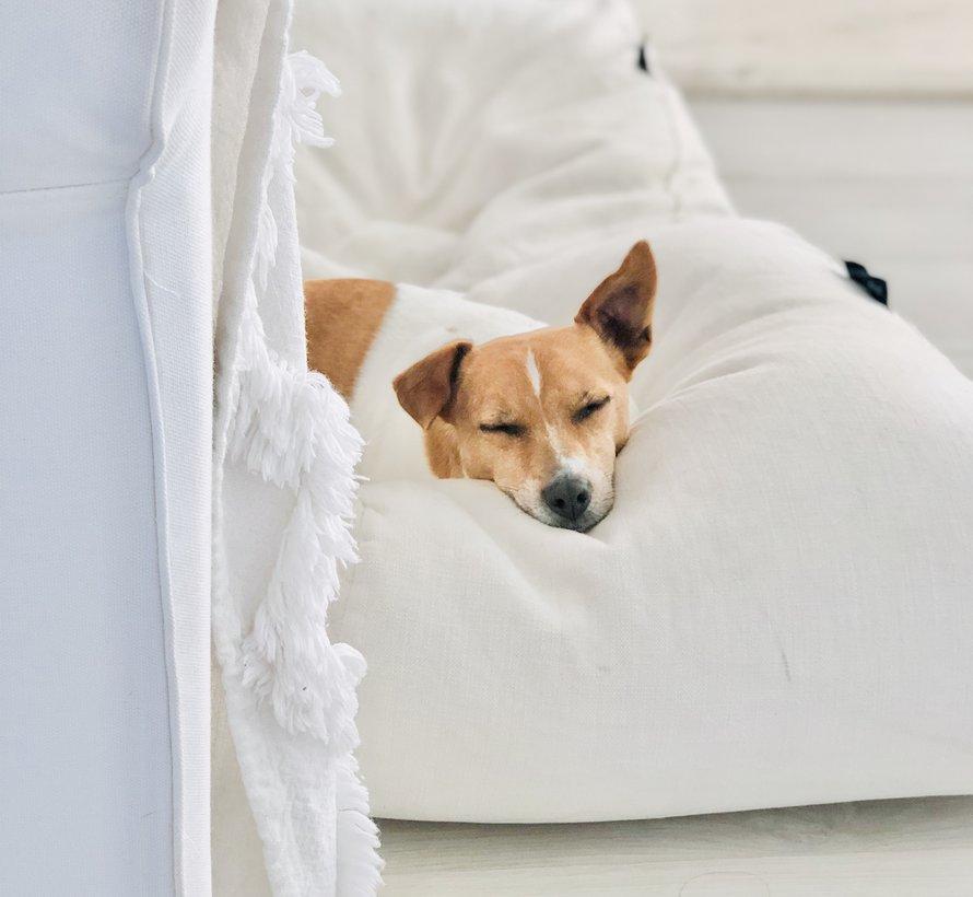 Dog bed white sand