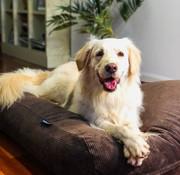 Dog's Companion Hondenbed Chocolade Bruin Ribcord Large