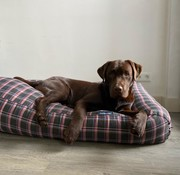 Dog's Companion Dog bed MacIntyre