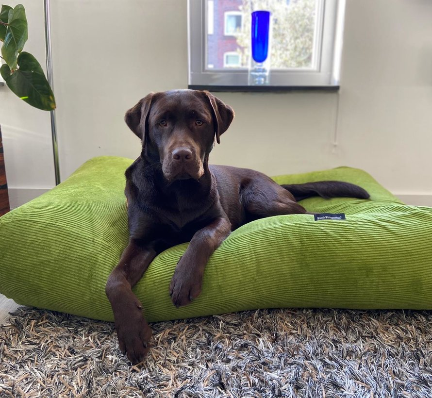 Dog bed Apple Green (Corduroy) Large