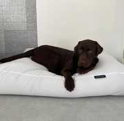Dog's Companion Hondenbed Wit vuilafstotende coating