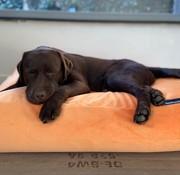 Dog's Companion Dog bed Peach Velvet