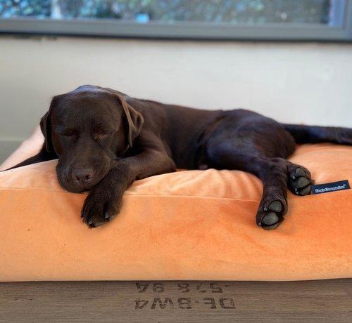 Dog's Companion Hundebett Peach Samt