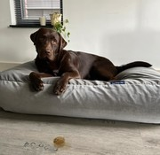 Dog's Companion Lit pour chien éléphant velours