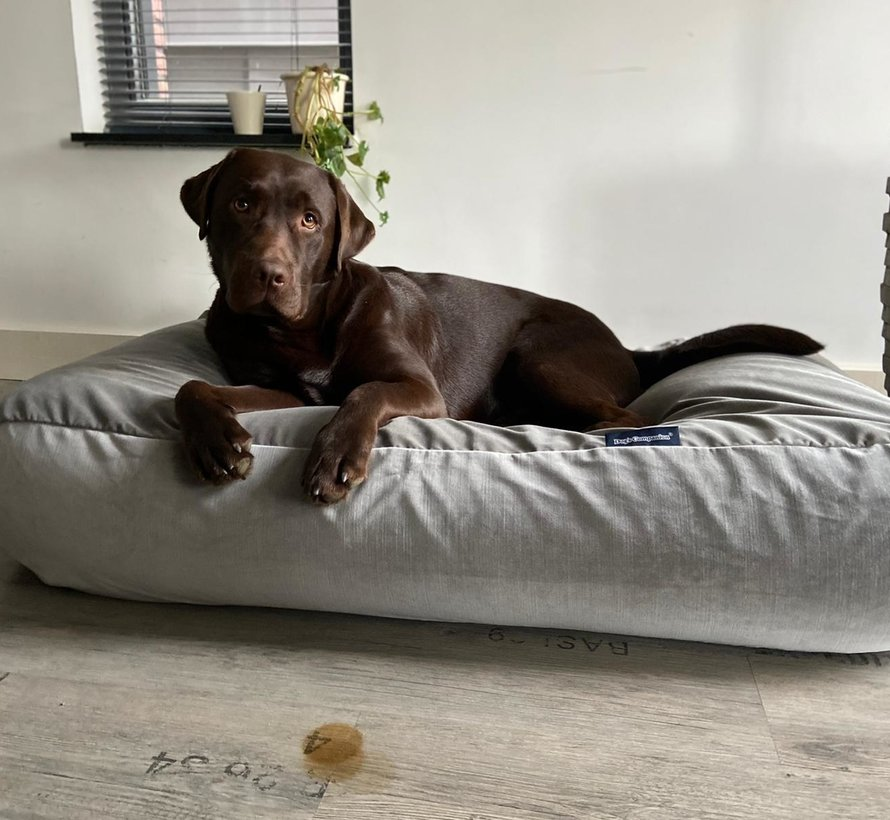 Dog bed Elephant velvet