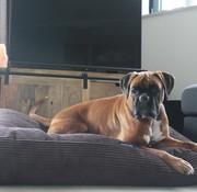Dog's Companion Pre-order! Hundebett Espresso giant corduroy