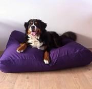 Dog's Companion Lit pour chien violet