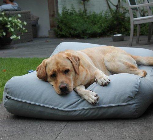 Dog's Companion Hundebett Hellgrau Large