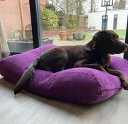 Dog's Companion Hondenbed Paars Ribcord