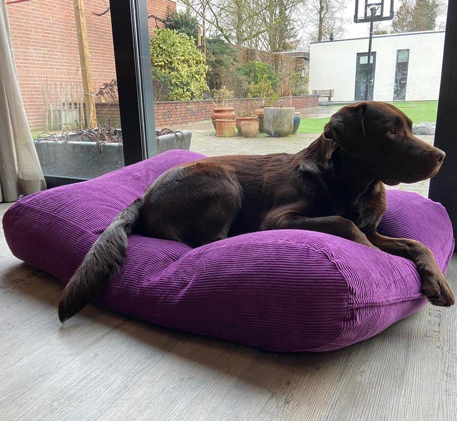 Lit pour chien violet (corduroy)
