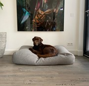 Dog's Companion Hondenbed Strong Vancouver grey