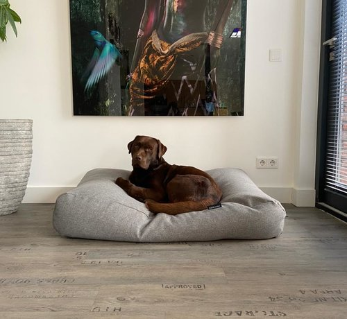 Dog's Companion Dog bed Strong Vancouver grey