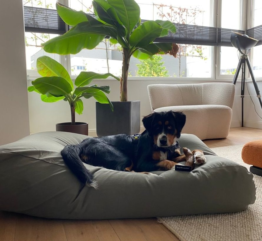 Lit pour chien Basalte Extra Small