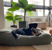 Dog's Companion Dog bed Basalt Superlarge