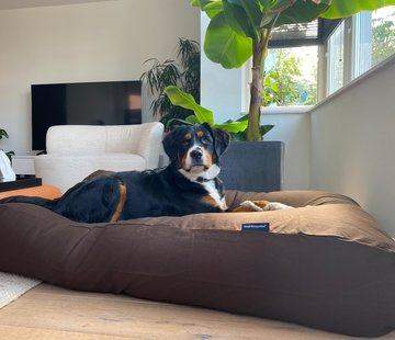 Dog's Companion Hondenbed Chocolade bruin