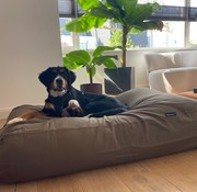 Dog's Companion Hundebett Flieder/Braun Small