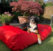 Dog's Companion Hondenbed rood vuilafstotende coating small