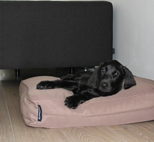 Dog's Companion Bankkissen taupe (68 x 62 x 10 cm)