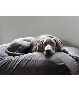 Dog's Companion Hundebett Mausgrau (Cord)