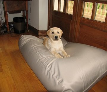 Dog's Companion Dog bed Extra Small Beige (coating)