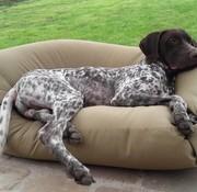 Dog's Companion Hundebett khaki (beschichtet)