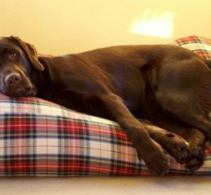 Lit pour chien Dress Stewart Superlarge
