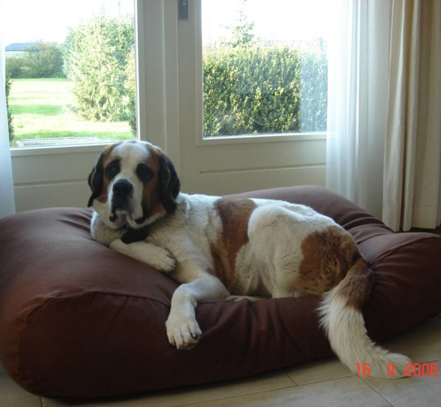 Dog bed Chocolate Brown Medium