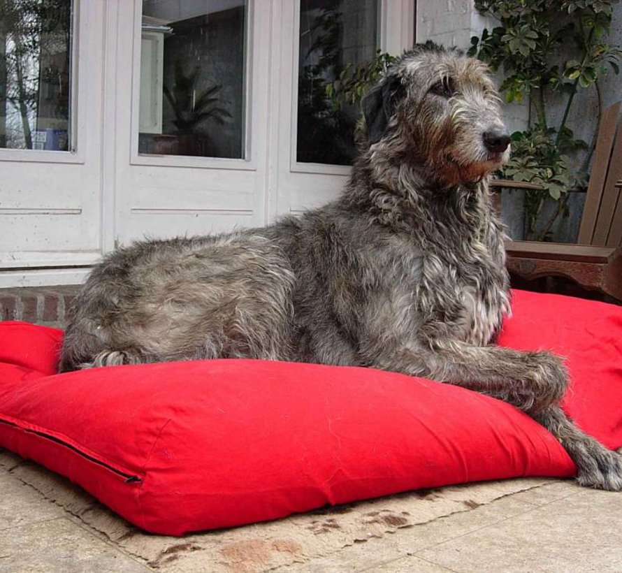 Lit pour chien Rouge Extra Small