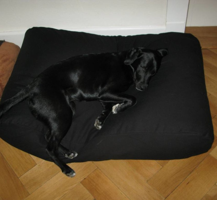 Lit pour chien Noir Large