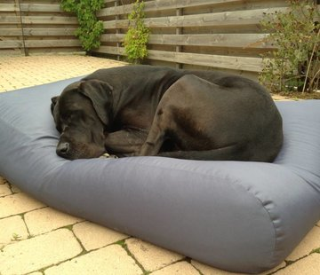 Dog's Companion Dog bed Steel Grey (coating) Superlarge