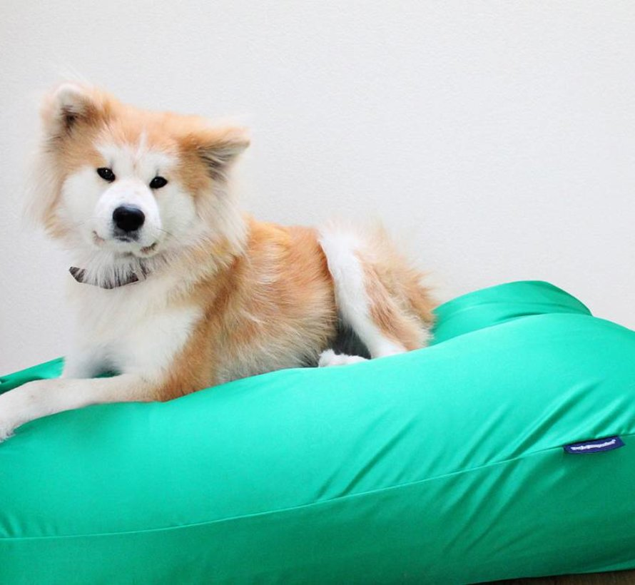 Hundebett frühlingsgrün (beschichtet) Extra Small