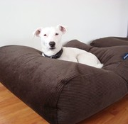 Dog's Companion Hundebett Schokolade Braun (Cord) Medium