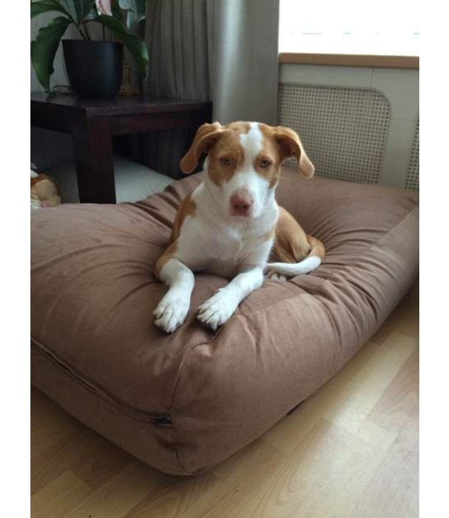 Dog's Companion Hondenbed Manchester ribcord Extra Small