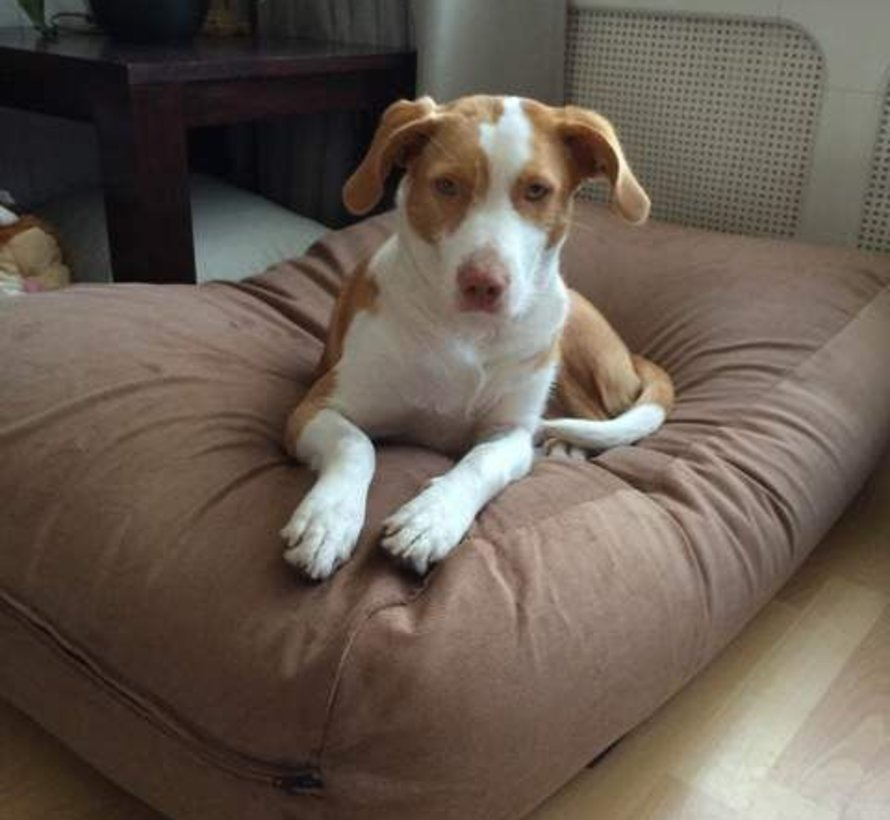 Dog bed Manchester (Corduroy) Extra Small