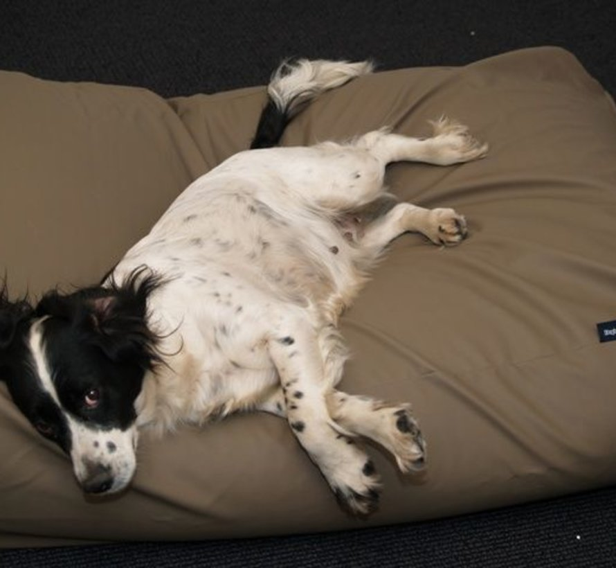 Hundebett taupe leather look Extra Small