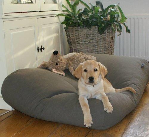 Dog's Companion Dog bed Mouse Grey Superlarge