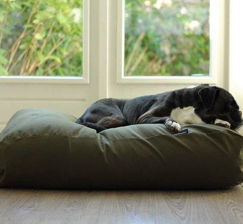 Dog's Companion Dog bed Hunting Extra Small