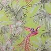 Matthew Williamson Matthew Williamson Bird of Paradise