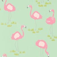 Felicity Flamingo