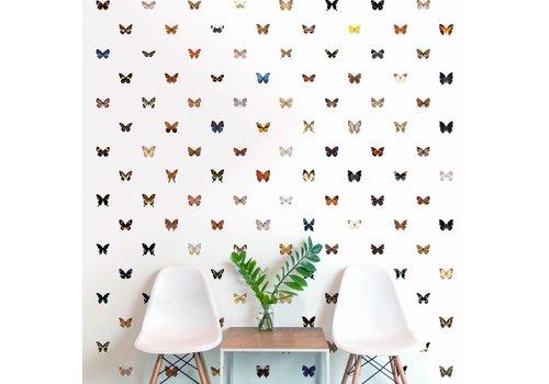 Naturalis Originals Vlinders
