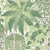 Cole & Son Cole & Son - Fern