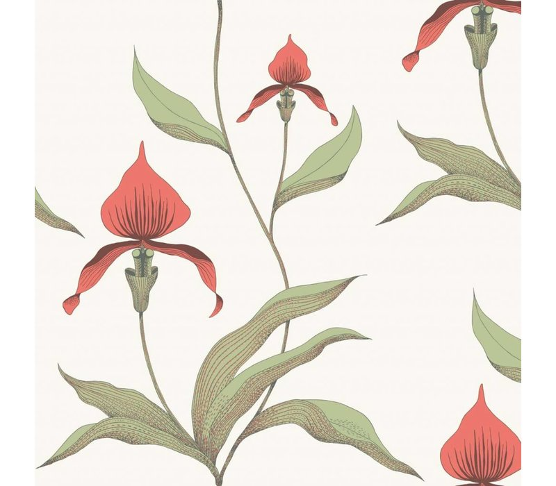 Cole & Son - Orchid 95/10054